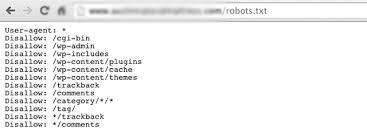 robots txt example file