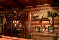 Mountain Lion mount in Lodge