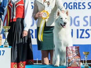 Бэйс- Юный чемпион Латвии!!!