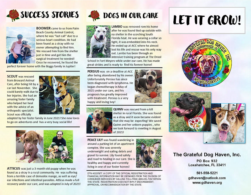 Let it Grow Tri-Fold - 8.5.21 - for Web p2.png