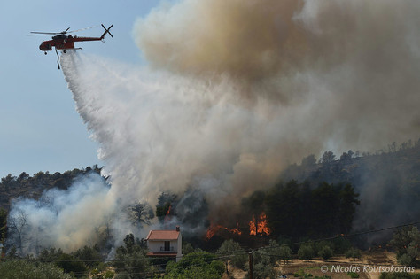 Wildfire rages in Evia