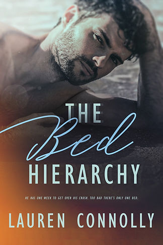 TheBedHierarchy_cover_small file.jpg