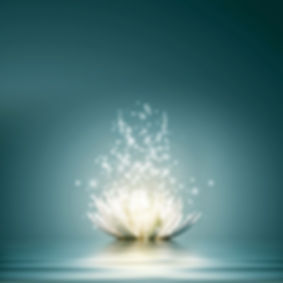 flower lotus white blue energy.JPG