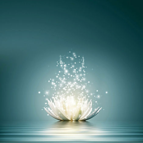 flower lotus white blue energy.JPG