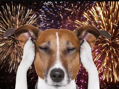 Those Dreaded Fireworks