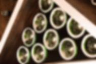Tom Goldsmith Joinery - Customised Wine Storage Racks