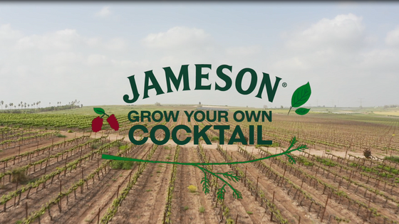 Grow Your Own Cocktail