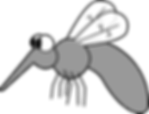 mosquito-blank-background.png