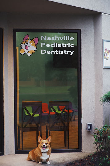 Nashville Pediatric Dentistry Bud Front Door