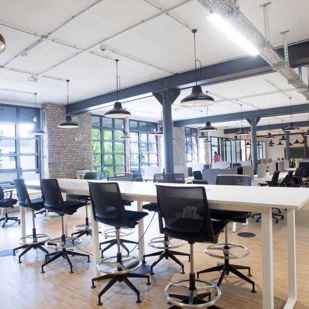 codeks   Workspace