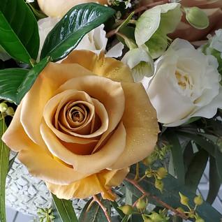 Combo Rose