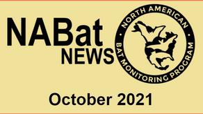 NABat News: October 2021