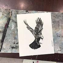 Birds In Flight Ink Workshop.jpg