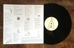 'Phantasm' Debut album by Fists
