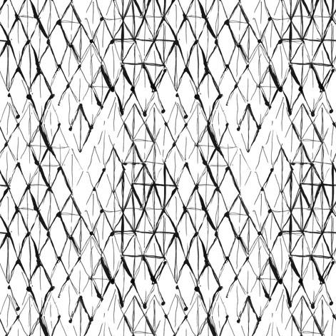 BlackLatice.05.jpg