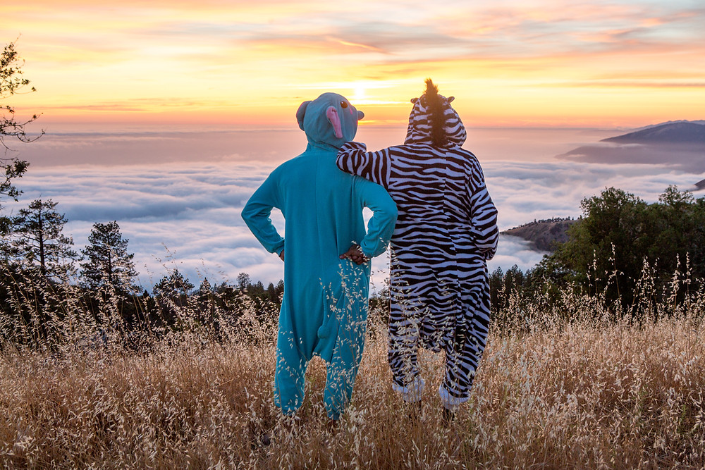 on top of a mountain, with a orange striated sunset above clouds, stands two people, standing with their backs showing, wearing adult animal onesies