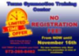 TGTC Promotion copy.jpg
