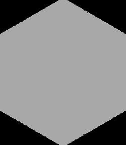 silver hex