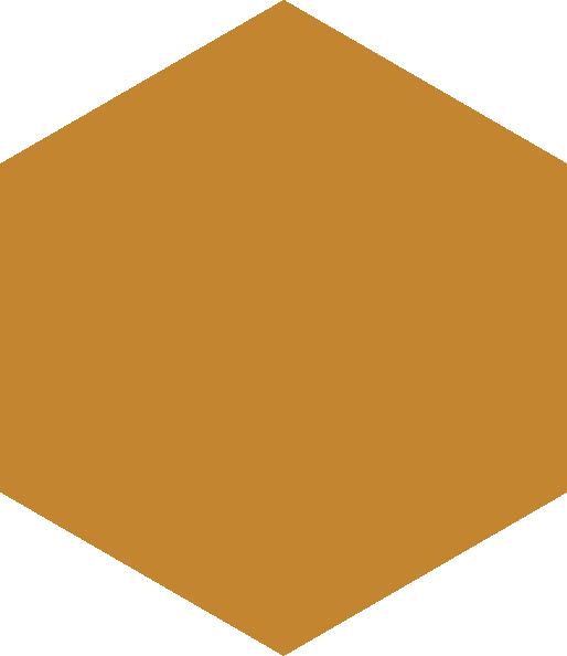 bronze hex
