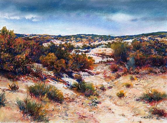 Desert Sands - 9697