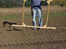 Planting Garlic.JPG