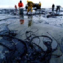 An oil spill being cleaned up