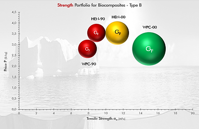 Strength Portfolio (Type B) (nL).png