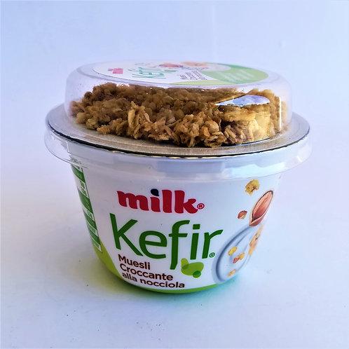 Milk Kefir Mix Crocc. Nocc. 160 Gr