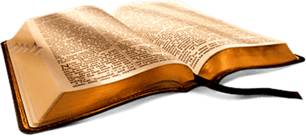 PikPng.com_open-bible-png_5886384.png
