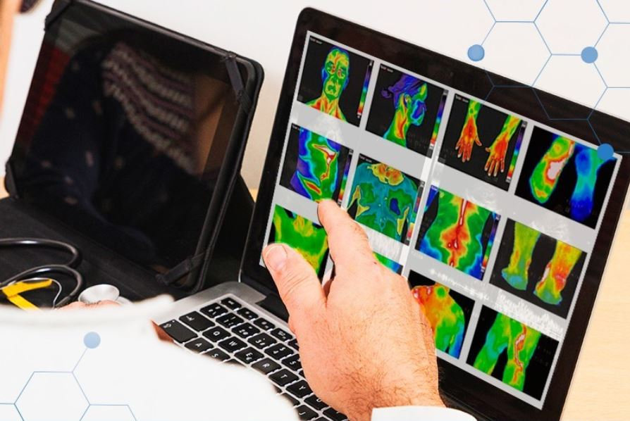 Half Body Thermography