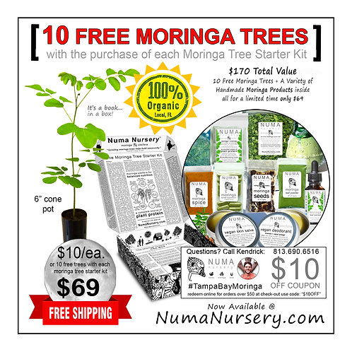 10 Free Moringa Trees with Starter Kit