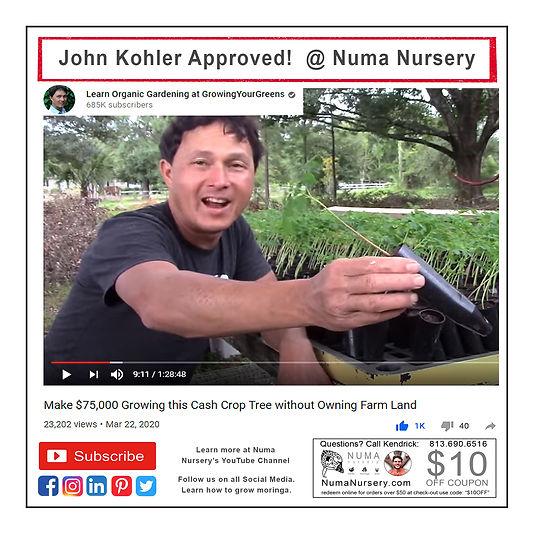 john-kohler-approved-trees.jpg