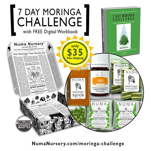 Moringa Challenge