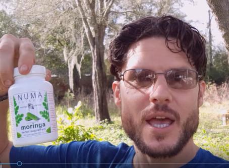Fastest Way To Use Moringa
