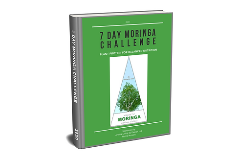 7-day-moringa-challenge-workbook-render.
