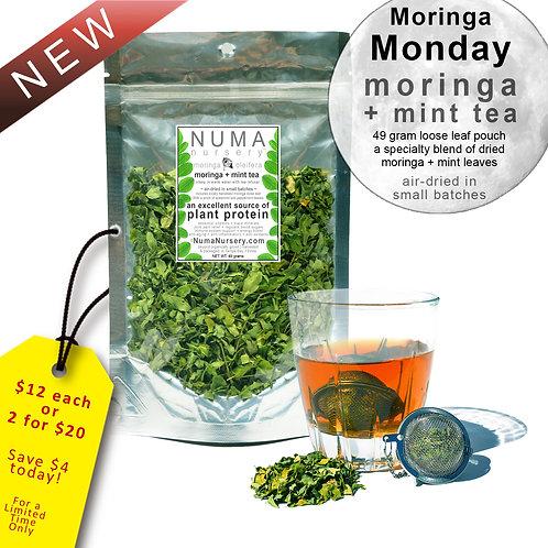 moringa + mint tea 50g