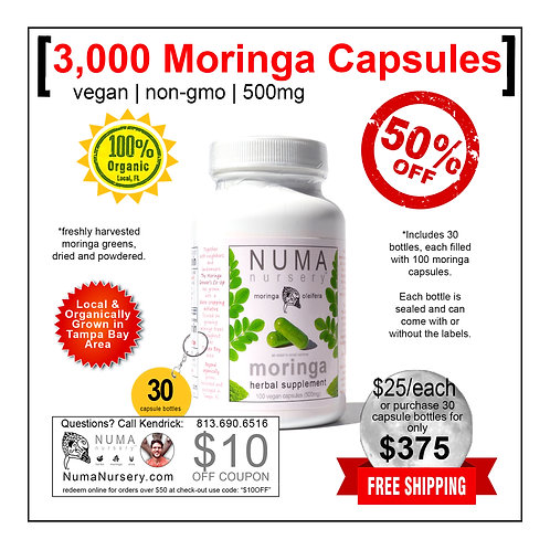 3,000 Moringa Capsules | 30 Bottles Wholesale
