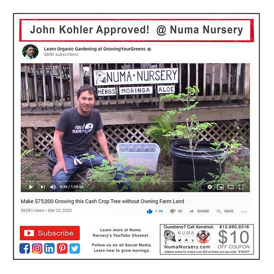 john-kohler-approved-numa-nursery.jpg