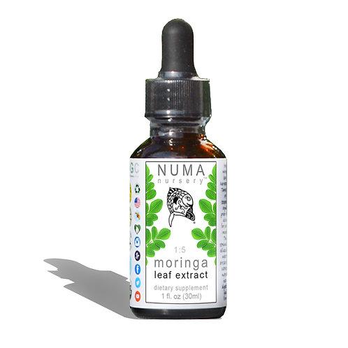 Moringa Leaf Extract 1oz