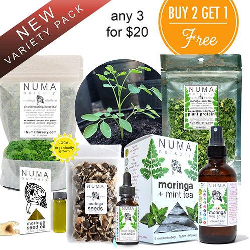 Moringa Variety Pack
