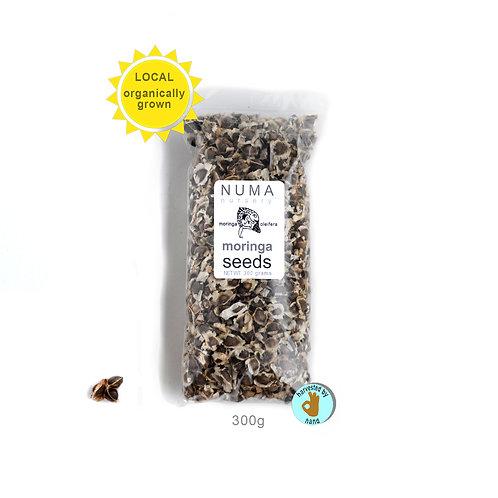 1,000 Moringa Seeds - Organic   Florida Grown