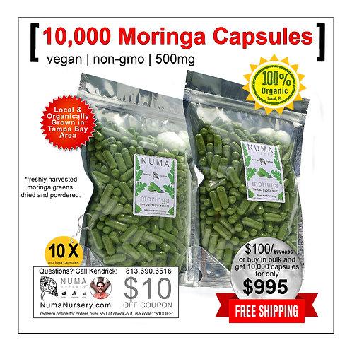 10,000 Moringa Capsules
