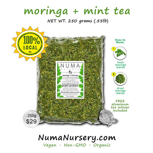 moringa + mint tea 250g
