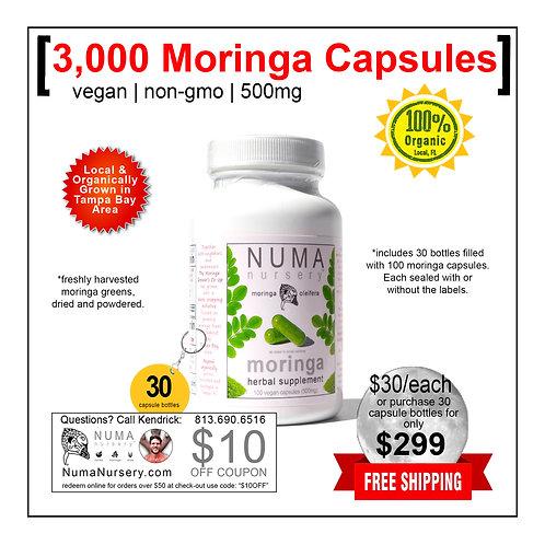 Moringa Wholesale | 3,000 Moringa Capsules