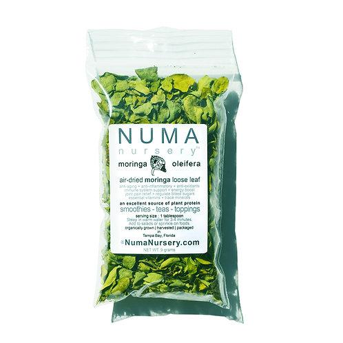 moringa leaf 9g