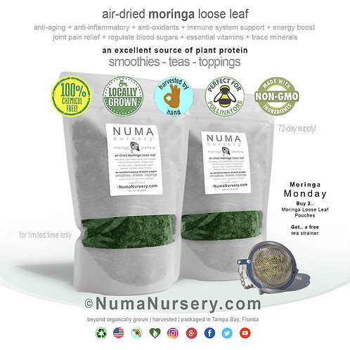 Moringa Leaf - dried | Buy 2 Get a Free Tea Strainer