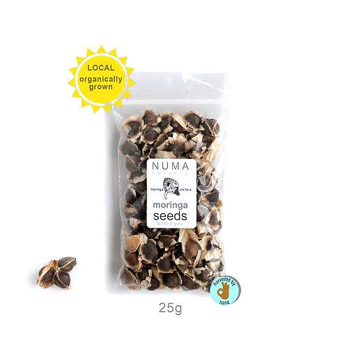 moringa seeds | 25g