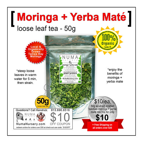 Moringa + Yerba Mate | Loose Leaf Tea - 50g