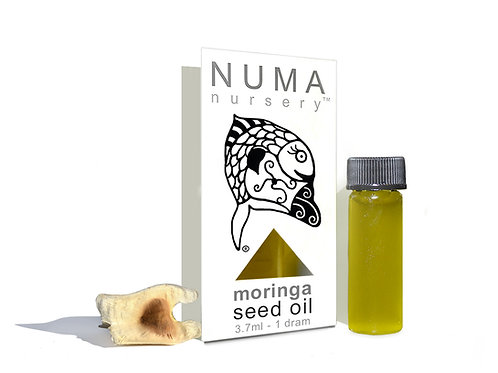 moringa seed oil 3.7mL
