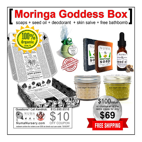 Moringa Goddess Box